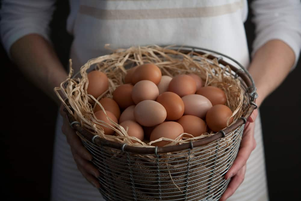 Photo of You know what they say about eggs in a basket? Maybe you should ignore it