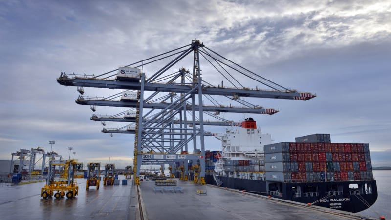 Photo of DP World adds new logistics app to streamline port movements