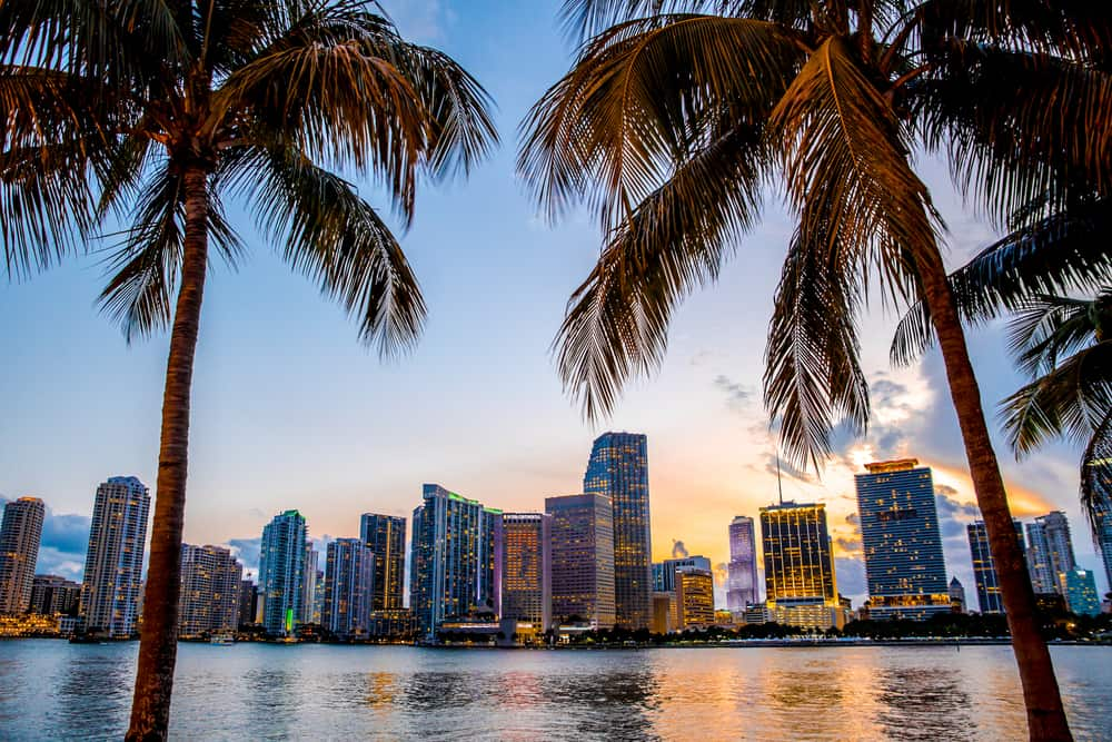 The skyline of Miami. ( Photo: Shutterstock )