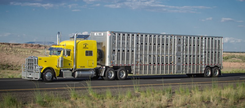 Photo of Safety, trucking groups blast ELD exemption bill for ag, livestock haulers