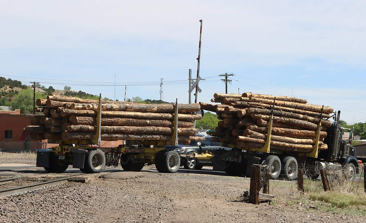 Photo of Lumber market update: futures prices still breaking records