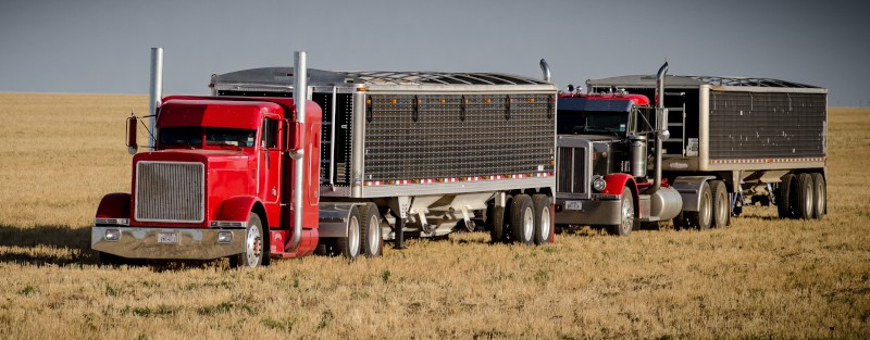 Ag haulers are not only dealing with ELDs and hour-of-service uncertainty, but tariff talk is clouding the future outlook as well. ( Photo: Truckstockimages.com )