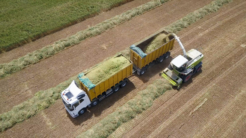 Photo of Illinois crop haulers get a break on weight limits just before a bumper harvest