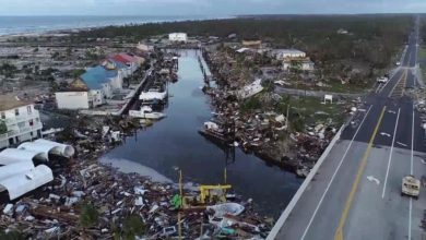 Photo of Hurricane Michael aftermath: localized damage, regional supply chains intact
