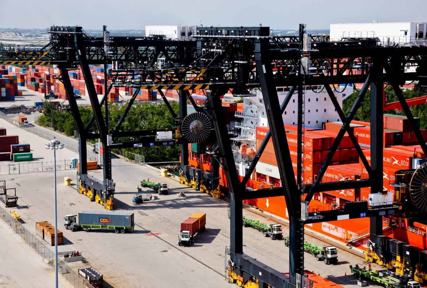 Photo of Florida International Terminal looks to expansion as reefer trade grows