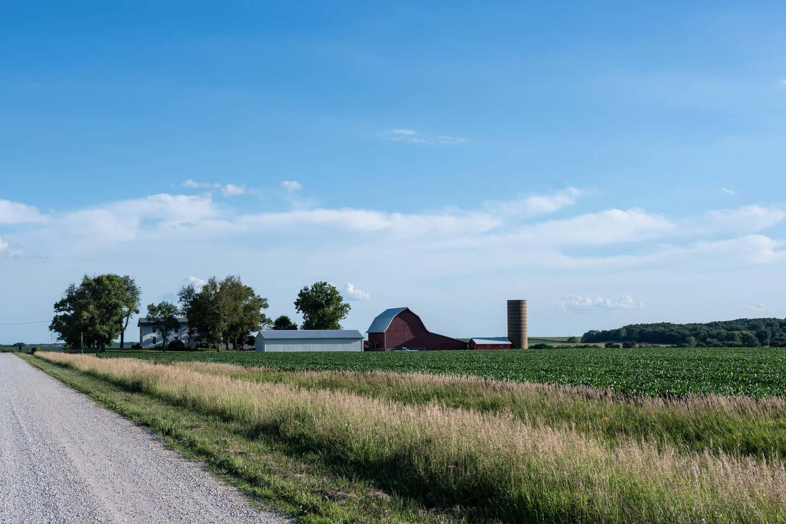 Photo of Ohio crops doing well despite bad weather: freight volume may pick up soon