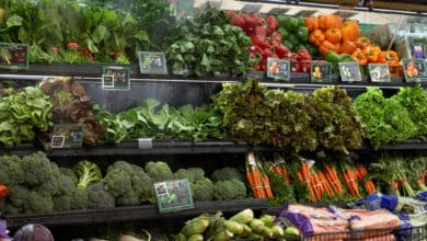 Photo of Transportation System Delivers Year-Round Produce