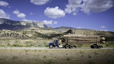 Photo of Slowing wood demand reduces global trade of lumber