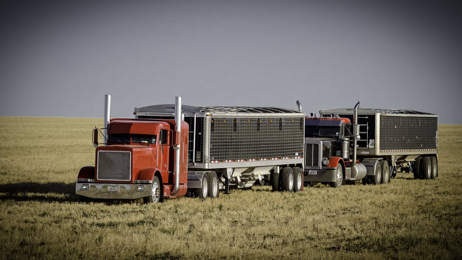 Photo of Indigo Agriculture launches Indigo Transport in ag supply chain