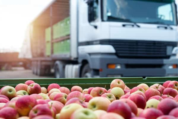 Photo of Berlin-based food logistics startup lands $11M in Series A