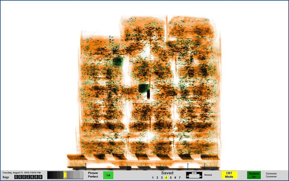 X-ray image of a wooden skid containing boxes of clothing. Note the nails in the wood.  IMAGE COURTESY OF Astrophysics