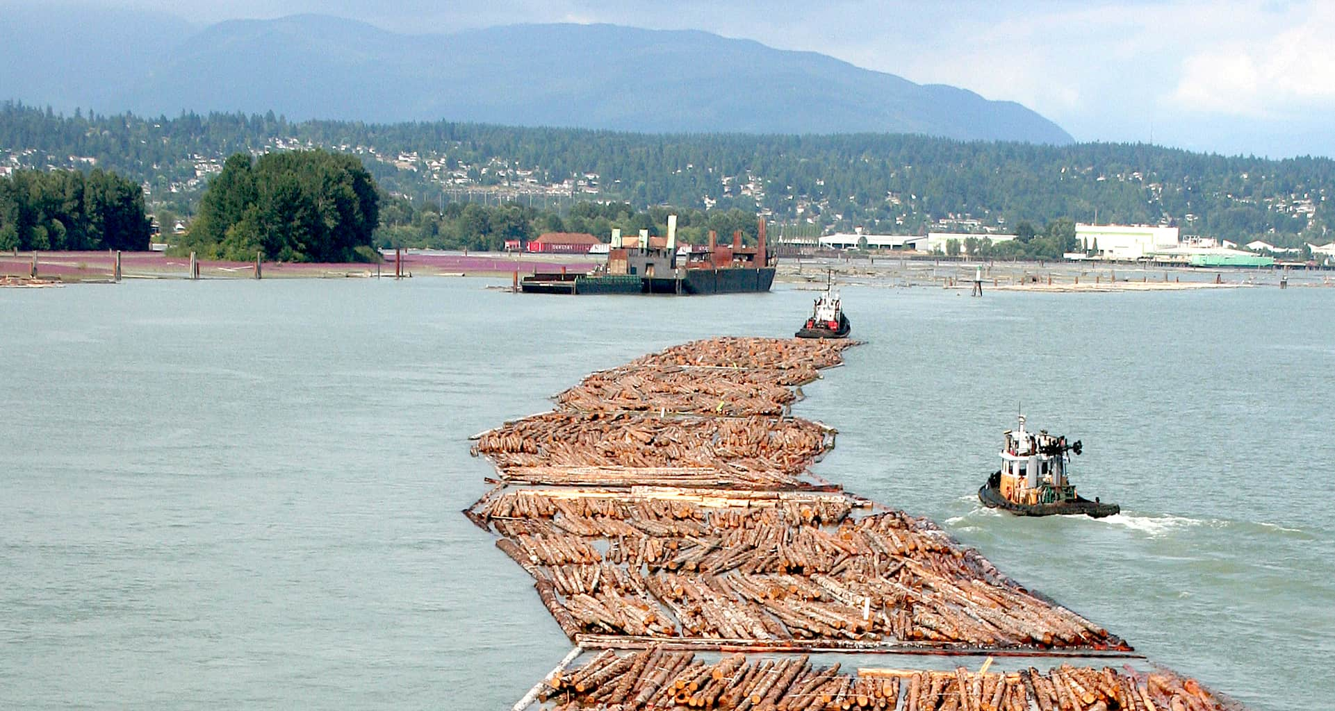 Photo of Canada to appeal WTO ruling over U.S. softwood lumber tariffs