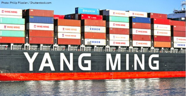 YangMing_used_7_5