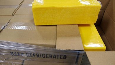 Photo of Trucker fined for trying to smuggle cheese into Canada (with video)