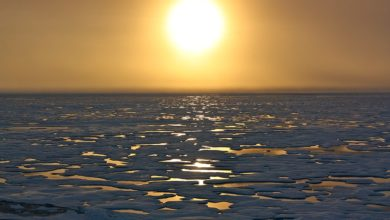 Photo of Russia seeks to open its Arctic waters to world shipping