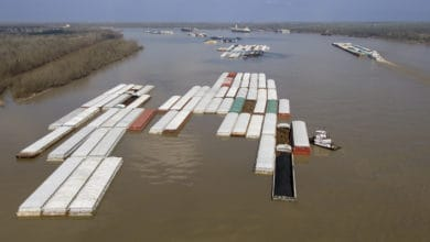 Photo of Floods raising freight rates, washing away revenues