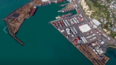 Photo of PORT REPORT: US$157 million Port of Napier IPO fails to excite
