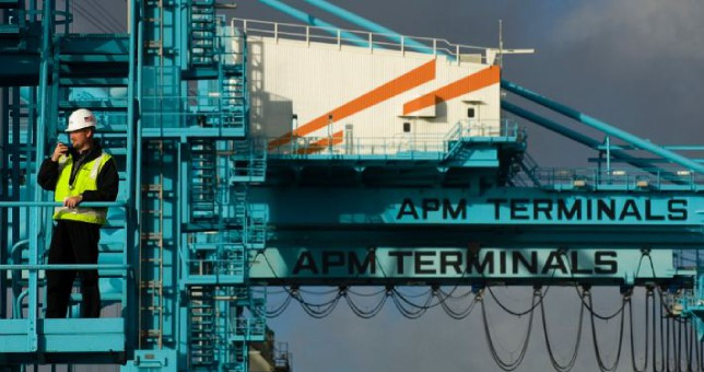 used_2019_3_22_APM-terminals-Los-Angeles