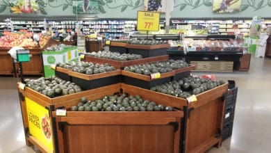 Photo of Soaring avocado prices expected to fall after unusually tight summer