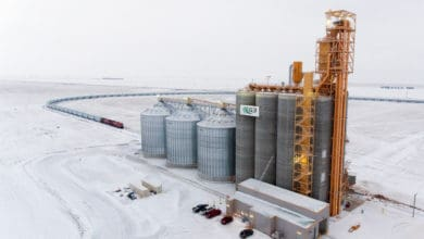 Photo of Canadian Pacific smashes grain volume records in 2018-2019