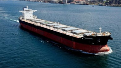 Photo of Star Bulk's loss narrower than forecast as fleet size increases