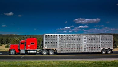 Photo of Commentary: Ag and livestock haulers seek regulatory concessions