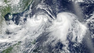 Photo of Two typhoons menace Asian sea freight centers