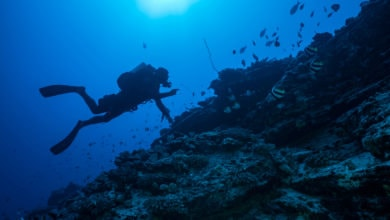 Photo of Florida-based diving equipment expert charged with illegal exports to Libya