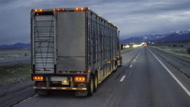 Food-as-software will make a chunk of ag-sector trucking obsolete (Photo: Jim Allen/FreightWaves)