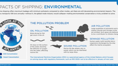 Photo of Shipping Impact Series: Environmental