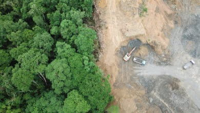 Photo of US sanctions aim to topple Cambodian timber magnate