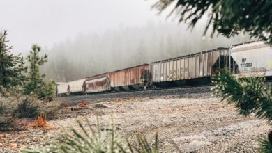 A photograph of railcars on some track. The railcars are passing through a forest with fog.