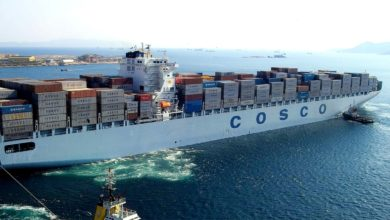 Photo of Container lines face intensifying cost squeeze
