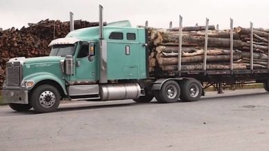Photo of Maple Leaf Motoring: Northern Pulp 'hibernation' vs. closure cold comfort to truckers