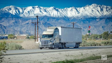 Photo of Freight Futures daily curve: 2/17