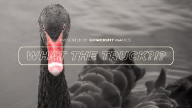 Photo of Black swan events lurking inside your supply chain – WTT?!? [with video]