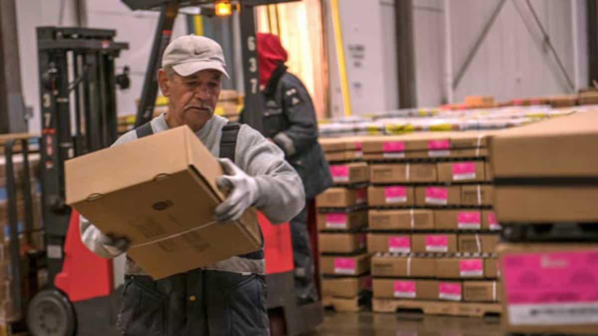 worker at cold storage facility