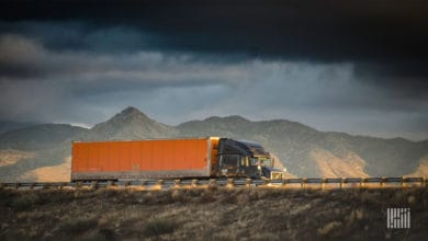 Photo of Freight Futures daily curve: 3/10