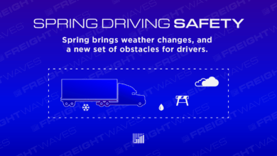Photo of Spring Driving Safety