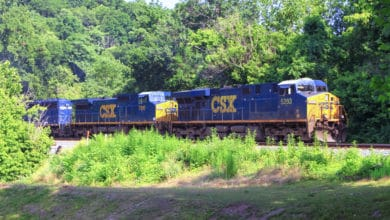 A photograph of a train traveling through a clearing in the woods.