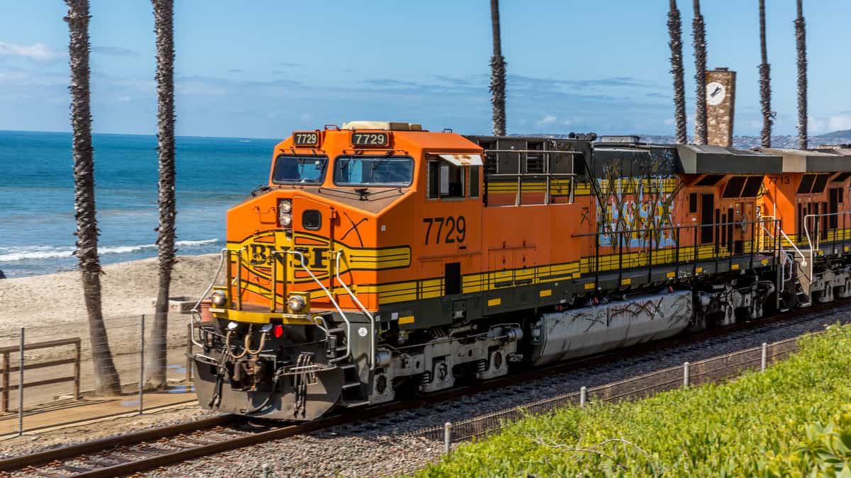A photograph of a train running along next to a beach. There are palm tree trunks and the ocean behind the train.