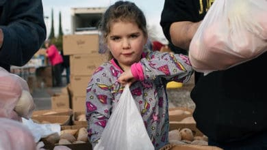 Photo of Convoy teams with shippers, truck drivers to shore up food banks