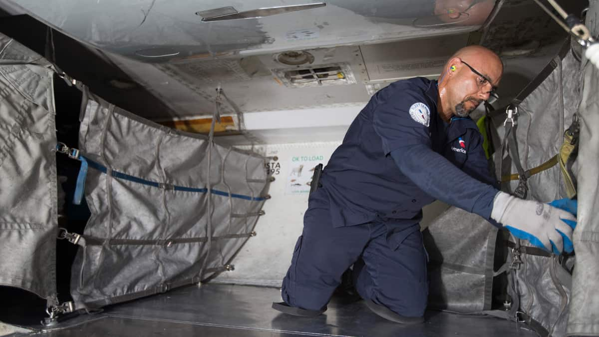American Airlines cargo handler inside an airplane dealing with cargo.