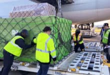 Ground handlers push pallet of cargo unloaded from cargo plane.
