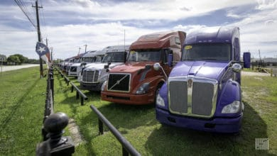 Row of used trucks