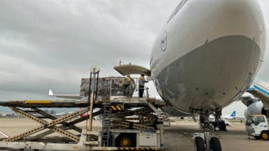 A Lufthansa passenger plane is loaded with cargo from the side door.