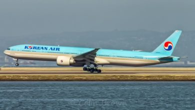 A light blue Korean Air jet lands on runway by water.