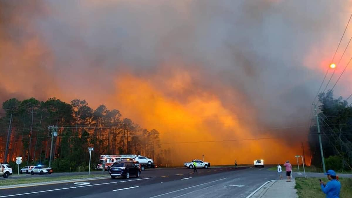 Wildfire burning in Walton County, Florida on May 6, 2019.