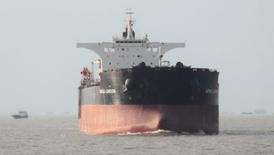 Photo of Capesize shipping rates sink 21% in a single day