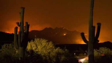 Photo of Large wildfires forcing Arizona road closures